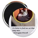 Kitten decor Magnet