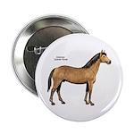 American Quarter Horse Button