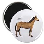 American Quarter Horse Magnet