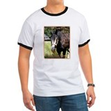 NORTHERN HORSE Source T