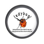 Ladybug Wall Clock