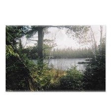 """Minnesota Beauty"" Postcards (Package of 8)"