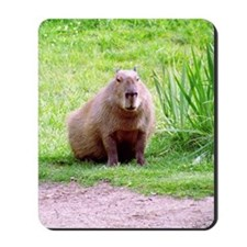 Capybara Looking Forward Mousepad
