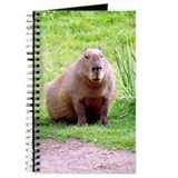Capybara Journals & Spiral Notebooks
