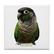 Green-Cheeked Conure -  Tile Coaster