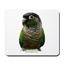 Green-Cheek Conure Mousepad