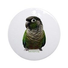 Green-Cheek Conure Ornament (Round)