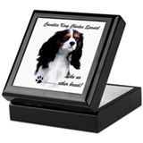 CKCS Breed Keepsake Box