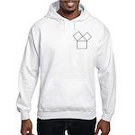 The 47th problem Hooded Sweatshirt