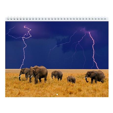 Elephants Wall Calendar
