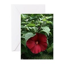 """Red Satelite"" Greeting Cards (Pk of 20)"
