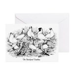 Shortface Tumbler Pigeons Greeting Cards (Pk of 20