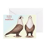 Shakhsharli Pigeon Standard Greeting Cards (Pk of