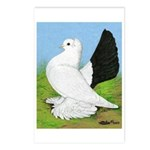 Russian Pigeon Postcards (Package of 8)