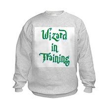 Wizard in Training 1 Sweatshirt