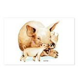 Pig and Piglet Postcards (Package of 8)
