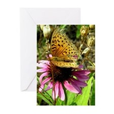 Fritillary Butterfly Greeting Cards (Pk of 10)