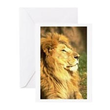 Facing Sideways Greeting Cards (Pk of 10)