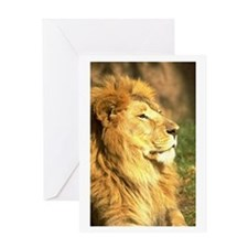 Facing Sideways Greeting Card