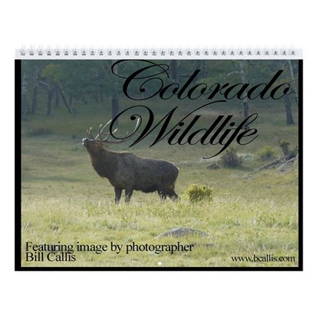 Charlie Alolkoy Photo Wall Calendar