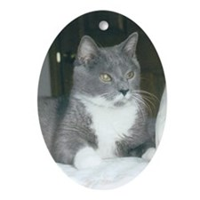 Cat Oval Ornament