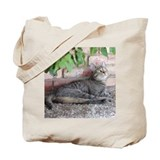 Cute Tabby cat Tote Bag