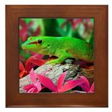 Gecko Lizard Framed Tile