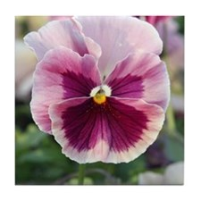 Pretty Pink Pansy Tile Coaster