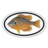 Sunfish Fishing Oval Decal