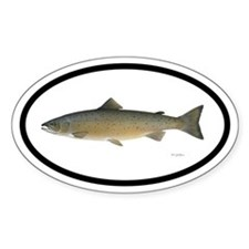 Atlantic Salmon Fishing Oval Decal