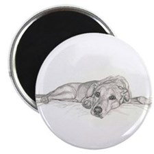 Cute Lazy dog Magnet