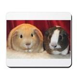 guinea pig Mousepad