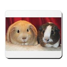 guinea pig Mousepad