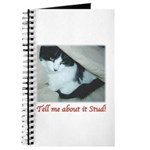 Valentine Kitty Journal