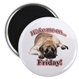 "Mastiff Friday 2.25"" Magnet (100 pack)"