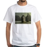 Avebury in the Frost Shirt
