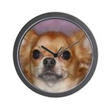 Long Coat Chihuahua Wall Clock