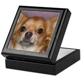 Long Coat Chihuahua Keepsake Box