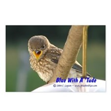 """Blue With A 'Tude"" Postcards (Package of 8)"