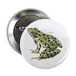 Leopard Frog Button
