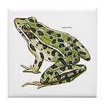 Leopard Frog Tile Coaster