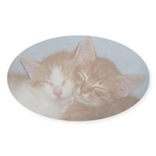 Kitten Friends Oval Decal