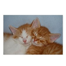 Kitten Friends Postcards (Package of 8)