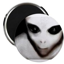 "Alien Grey 2.25"" Magnet (10 pack)"