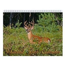 Whitetail Deer Wall Calendar