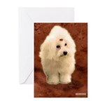 Coton De Tulear Greeting Cards (Pk of 10)