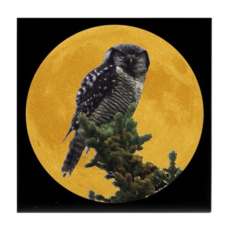 Owl and Moon Tile Coaster