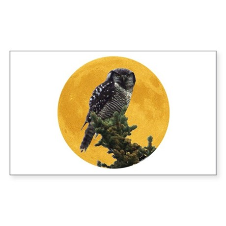 Owl and Moon Rectangle Sticker