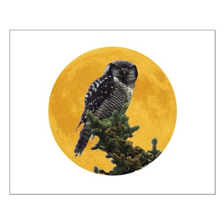 Owl and Moon Small Poster