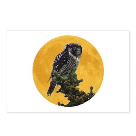 Owl and Moon Postcards (Package of 8)